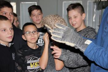 Medzi piatakov a šiestakov na ZŠ Dr. J. Dérera prišiel živý ježko