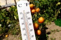 Španielsko má za sebou najteplejšiu jar od začiatku meraní