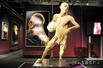 Výstava The human body exhibition v bratislavskej Inchebe