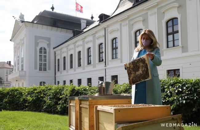 V prezidentskej záhrade a na bratislavskom magistráte chovajú včely