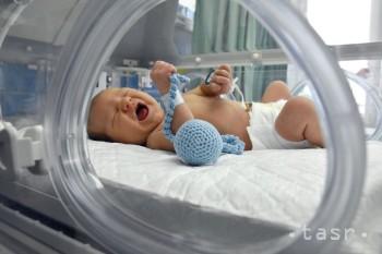 OZ Malíček: Počet predčasne narodených detí stúpa