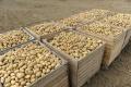 Poľnohospodári minulý týždeň končili so zberom plodín