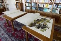Najväčšia a najmenšia kniha na Slovensku