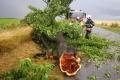 V troch okresoch južného Slovenska hrozia popoludní búrky s krúpami