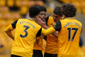 Wolverhampton otočil zápas s Brightonom a vyhral 2:1