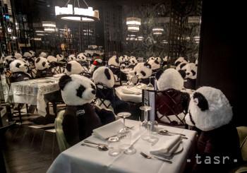 Majiteľ zatvorenej reštaurácie posadil za stoly plyšové hračky pandy v centre Frankfurtu v utorok 23. februára 2021. V Nemecku platí čiastočný lockdown v dôsledku koronavírusovej pandémie.