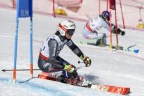 SENZÁCIA: Slovensko získalo na MS v súťaži tímov striebornú medailu