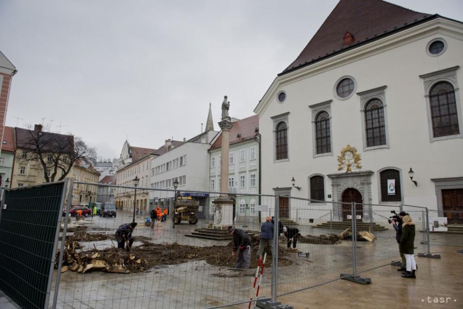 631ba858bb9a3 Na Františkánskom námestí v Bratislave v utorok 2. marca 2016 začali rúbať  11 starých a chorých stromov, ktoré mali 40 až 60 rokov a boli v zlom  statickom ...