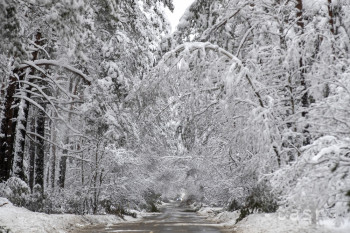 Štvrtýkrát počas tejto zimy klesla teplota pod mínus 20 stupňov Celzia