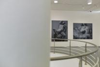 Výstava Adama Šakového s názvom Nerast