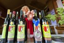 Ríbezľový Devín ríbezle trhy jarmok víno návštevní