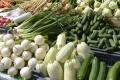 Rezort pôdohospodárstva už pripravuje Národný potravinový katalóg