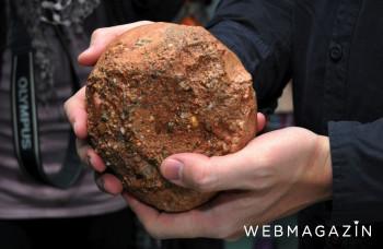 Košický vedec analyzoval skamenené embryo dinosaura