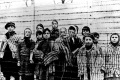 Výstava (Ne)zabudnuté tragédie miest a obcí približuje holokaust