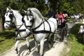 Národný žrebčín v Topoľčiankach je vyhľadávaným turistickým miestom