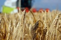 Slovenský pozemkový fond s farmármi v Košiciach prebral ich problémy