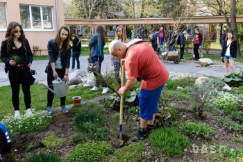 Počas ekologického dňa deti vysadili desiatky rastlín