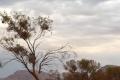 OSN upozorňuje: Teplota na Zemi sa neustále zvyšuje