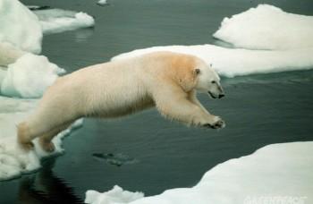 Chladnička sveta Arktída sa topí, čo bude ďalej?