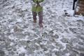 VIDEO: Na východe kvôli mrazom a zlej starostlivosti odobrali 40 detí