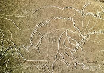 V Indonézii zrejme objavili najstaršie figuratívne jaskynné maľby