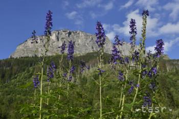 Poľana je najospevovanejším vrchom,povesti sa viažu najmä k Jánošíkovi