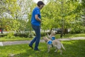 V Štiavnici osadia psie toalety, psičkárov chcú informovať letákmi