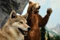 V Trebišove sprístupnili expozíciu poľovníctva a ochrany zvierat