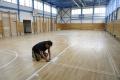 Šaľa získala dotáciu na rekonštrukciu a vybavenie školských telocviční