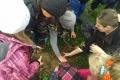 Žiaci, zapojení do súťaže Úsmev pre strom, vytvárajú aj ekoprojekty