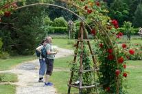 Arborétum Mlyňany, ruže
