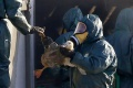 Na Slovensku sa vtáčia chrípka potvrdila už v 23 prípadoch