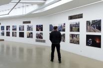 vystava, galeria