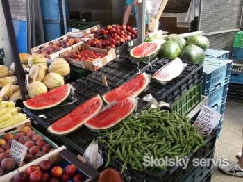 Študenti ekológie TU sa naučia chrániť ohrozené druhy ovocia