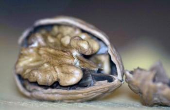 """Orechy udržujú štíhlu líniu, chránia zdravie a mužom aj ich """"pýchu"""""""