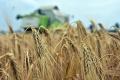 Obchodné dohody EÚ s tretími štátmi podporili vývoz agroproduktov