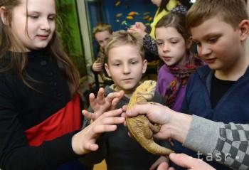 Košická Zoo ponúka školákom prázdninový tábor so zvieratami