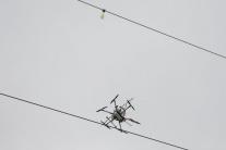 Ochrana vtáctva na elektrickom vedení