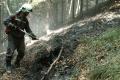 Hasiči likvidujú požiar trávy pri Lomničke
