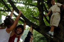 Leto s deťmi: Polovicu zranení detí spôsobujú pády pri hre a športe