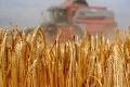 V Gbeľanoch ocenili najlepších poľnohospodárov aj najkrajší chotár