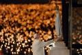 Pápež sa modlil za obete útokov v Británii a Egypte
