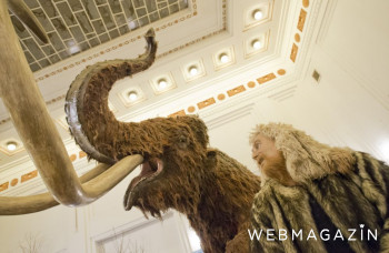 Na Červenej veži pri Piešťanoch žili lovci mamutov pred 40.000 rokmi