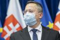 L. Kamenický: Vláda bude zodpovedná za každú skrachovanú firmu