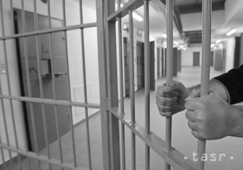 V slovenských väzeniach je v súčasnosti 225 cudzincov