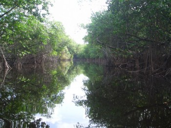 Cez víkend otvoria v Gbeloch-Adamove plavebnú sezónu na rieke Morava
