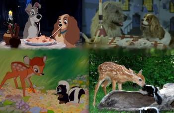 Tradičné aj netradičné prirovnanie Disneyho zvierat k realite