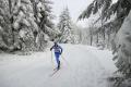 Digginsová triumfovala na 5 km voľne, Prochádzková nebodovala