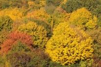 Jeseň na Slovensku