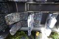 V Maďarsku havaroval autobus, jeden človek umrel a 34 sa zranilo